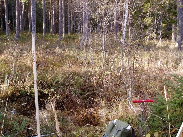 PROTOCOL FOR PEATLANDINVESTIGATION ADMINISTRATIVE INFORMATION Id nr: Name of peatland: TM 1 Stenrösmossen Map: X= Northing 6697584 Coring point Id: PFM004422 BP 9 200/V50 Y= Easting 1631102 Date of