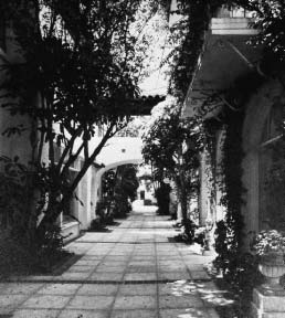 HISPANIC LECTURE 363 and Venice too, and in a few years before 1926 achieved a dazzling series of clubs and houses and hotels and even a shopping street for the very rich in Palm Beach.
