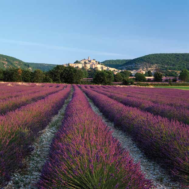 Provence Route Classique 7 nights A-ROSA stella season s apr 11, 18 oct 17* season a apr 25 may 2 oct 3*, 10* season b may 23,