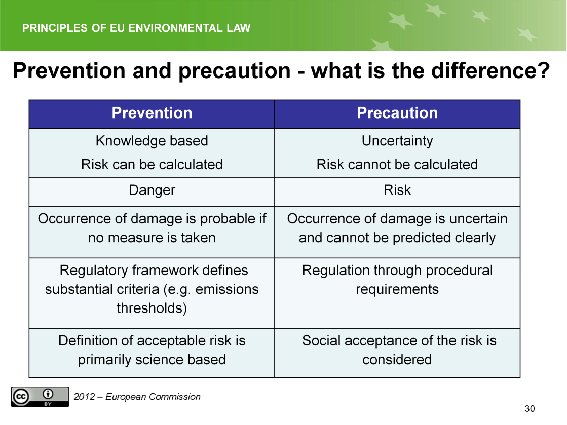 Slide 30 The main difference between prevention and precaution is that the calculation of the risk is much more difficult in the precautionary situation because of