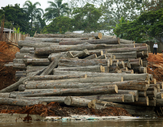 INNOVATION FORUM: DEFORESTATION BRIEFING 5 Lots of jargon what does it mean?