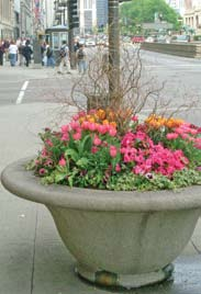 Planters (Container Gardens) *These are just a few of the websites PWD came across during our research.