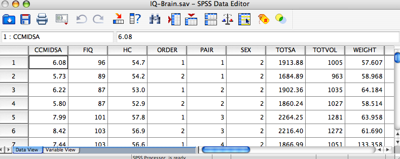The left frame of the SPSS Viewer lists the objects contained in the window.