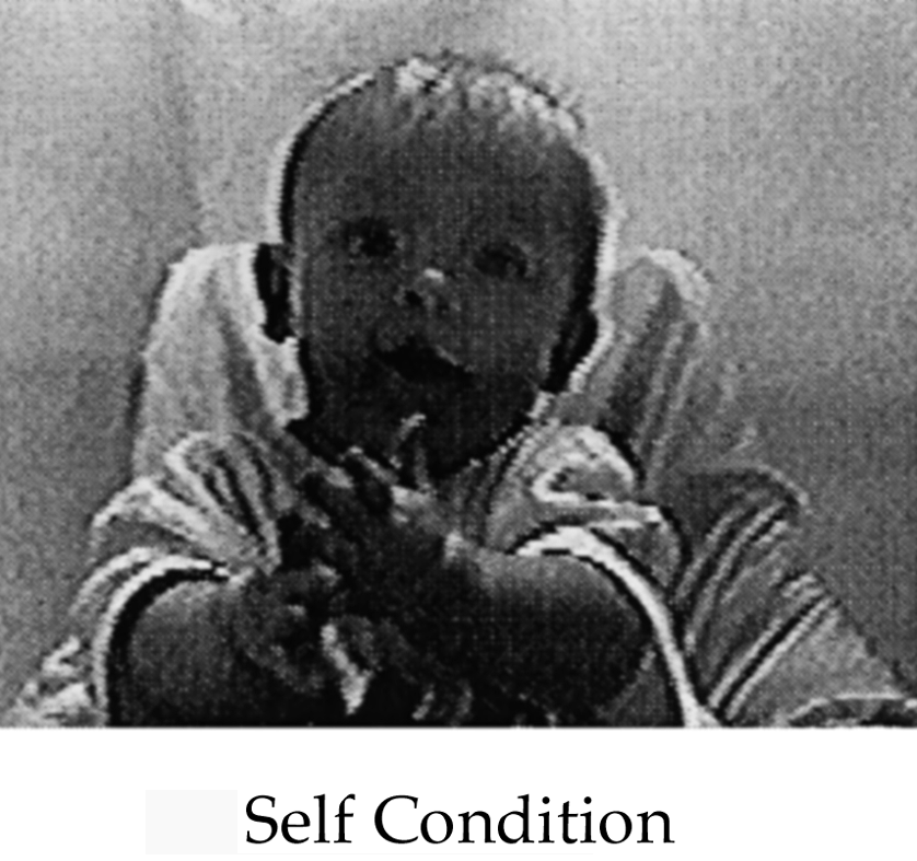 Rochat and Striano 39 which was placed behind the one-way mirror, was invisible to the infants and filmed them at eye height through the mirror projecting the TV image seen by the infants.