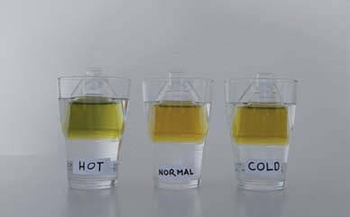 teacher notes 1. The water in the bottle placed in the hot water bath changed gradually from yellow to green. This means that the dissolved CO 2 escaped back to the air making the water more basic.