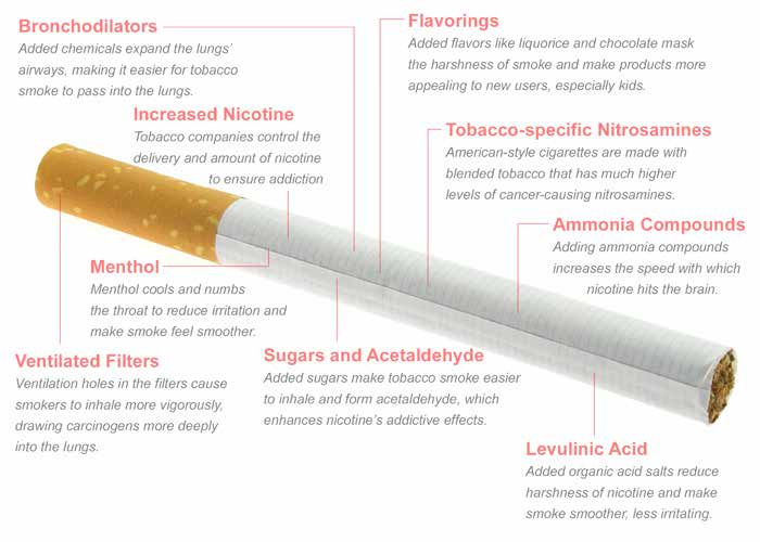 Executive Summary In the 50 years since the first Surgeon General s report on smoking and health alerted Americans to the deadly consequences of cigarette smoking, the United States has made enormous