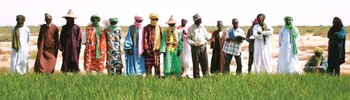 COUNTRY REPORTS AFRICARE S EXPERIENCE WITH SRI IN MALI A fricare has been engaged in Mali since 1973, working with village populations to increase food production and rural incomes, improve health