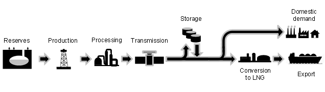 production, processing and transmission (figure 1.1).