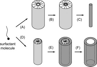 alloys (e.g., Au/Pt). Each individual 1D nanostructure obtained from these templates was a polycrystal.