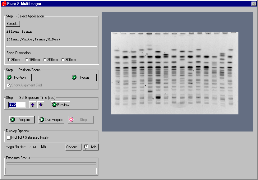 Fluor-S MultiImager Fig. 8-2. Fluor-S acquisition window When the Fluor-S window first opens, no image will be displayed.