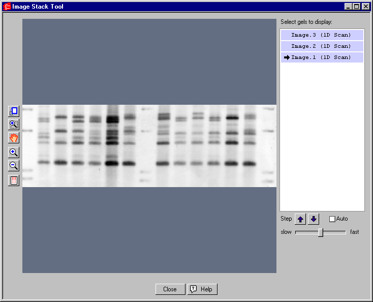 Viewing and Editing Images Fig. 12-7. Image Stack Tool. In the Image Stack Tool window, all available gels will be listed in the field to the right of the display window.