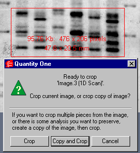 Viewing and Editing Images Fig. 12-16. Crop box and pop-up Crop dialog.