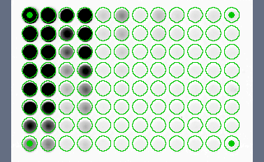 Volume Tools Select the shape of the wells/cells (Circular or Rectangular) and click on OK. The array overlay will be created and displayed on the image. Fig. 16-10. Array overlay.