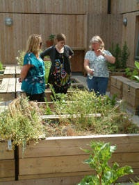 Anne Swithinbank of BBC Radio 4 Gardeners Question Time at One Brighton the rooftop allotments have featured in several episodes.