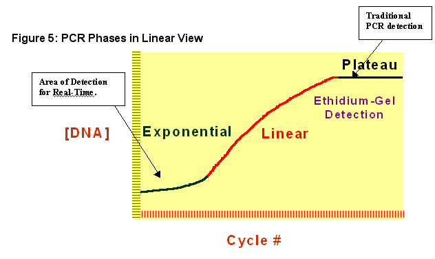 The 96 replicates in the exponential phase are very tight in both the linear and logarithmic views.