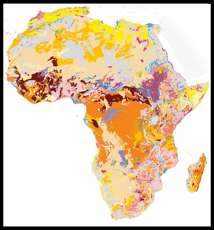 THE SOILS OF AFRICA ARE VERY DIVERSE, RANGING FROM HIGHLY ACIDIC AND HARSHLY WEATHERED TO DARK,