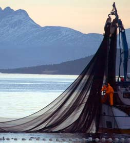 part 6 The management and utilisation of marine resources Large parts of the Norwegian Sea and the Barents Sea are under Norwegian fisheries jurisdiction.