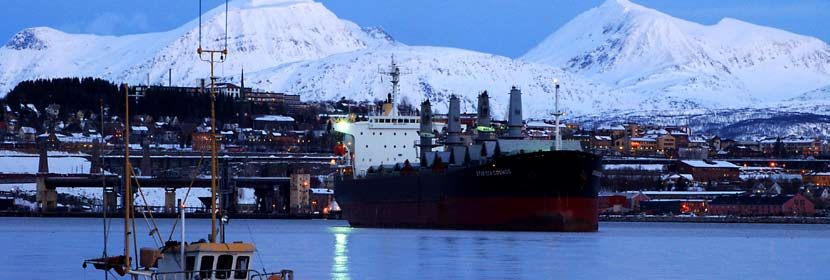 The port of Narvik will play an important role in the North East West Freight Corridor.