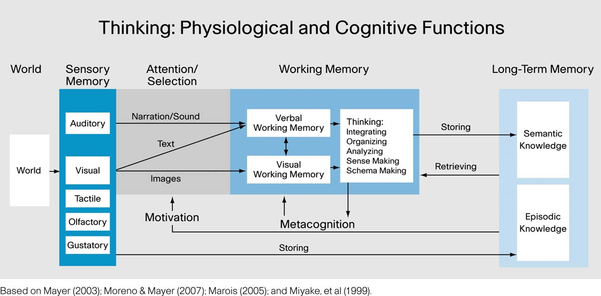 provided the sensory input is received within the same timeframe. Convergence in the creation of memory traces has positive effects on memory retrieval.