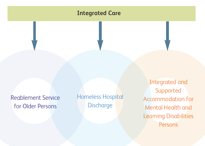 VFM of care Figure