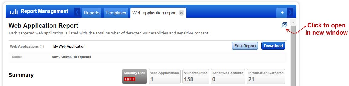 This way you can quickly apply filters to the report content, like which vulnerabilities and web applications.