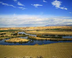 From the north side of Three Island Crossing, the main route of the Oregon Trail leaves the Snake River and heads directly northwest into the foothills.