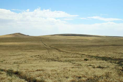 Most emigrants reached this part of the overland trail in late July or August, when the heat of the day presses down like a heavy quilt, burdening the body and muddying the mind.