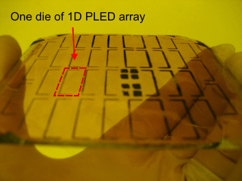 72 Figure 3.26. Photograph of fabricated dies of 1D array of PLEDs on PET substrate, temporarily attached to a glass wafer. many dies on the wafer, as shown in Fig. 3.26, is cut simply using a blade and attached to the tip of the cantilever of the polymer scanner, where a window has been opened before, as shown in Fig.
