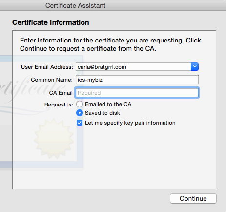 Give your CSR a helpful descriptive name, such as iosapp.