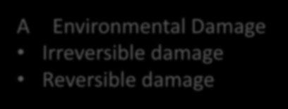 Damage and Compensation A Environmental Damage Irreversible damage Reversible damage Damage in material term