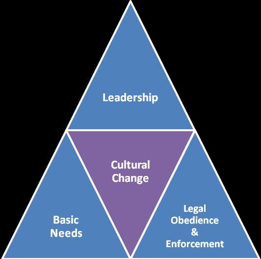 264 Limits of Good Governance in Developing Countries Figure 7.2. Model of Cultural Reform Triangle (created by the author) Leadership is a very essential factor to make government institution more dynamic.