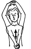 Shoulder Shrug Hunch shoulders up towards your ears and then relax. Shoulder Circles Rotate shoulders backward and then forward. Elbow Circles Place your fingertips on your shoulders.