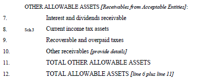 Other Allowable Assets This section should only include receivables from AEs. (Refer to Appendix 1 for the definition of AE.