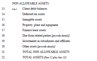 Non-Allowable Assets Non-allowable assets mean those assets that do not qualify as allowable assets. Generally, nonallowable assets include items that are not readily convertible into cash.