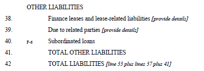 Other Liabilities Line A38 Finance Leases and Lease-Related Liabilities Line A38 includes both the current and non-current portions of finance leases and lease-related liabilities.