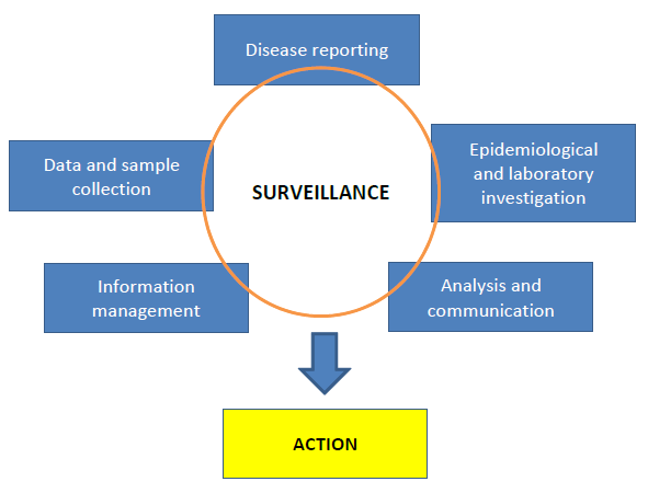 5.5. Diagnostic capability Figure 3 Essential components of a surveillance system The programme should be supported by diagnostic facilities with adequate capability and capacity.