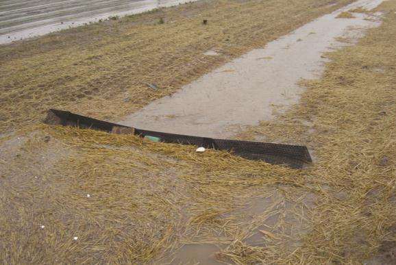 Ditches Silt Berm