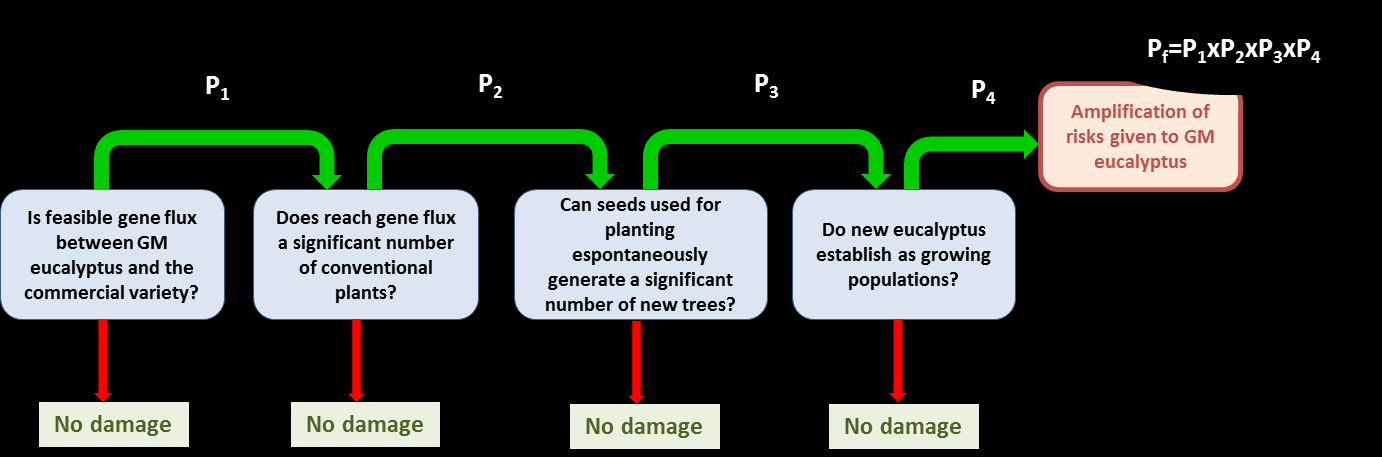 pathway to harm for each hazard, in which the last stage is the impact at the assessment endpoint (or parameter).