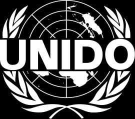 the UN Agency for Industrial Development has a Climate Policy and Network Unit