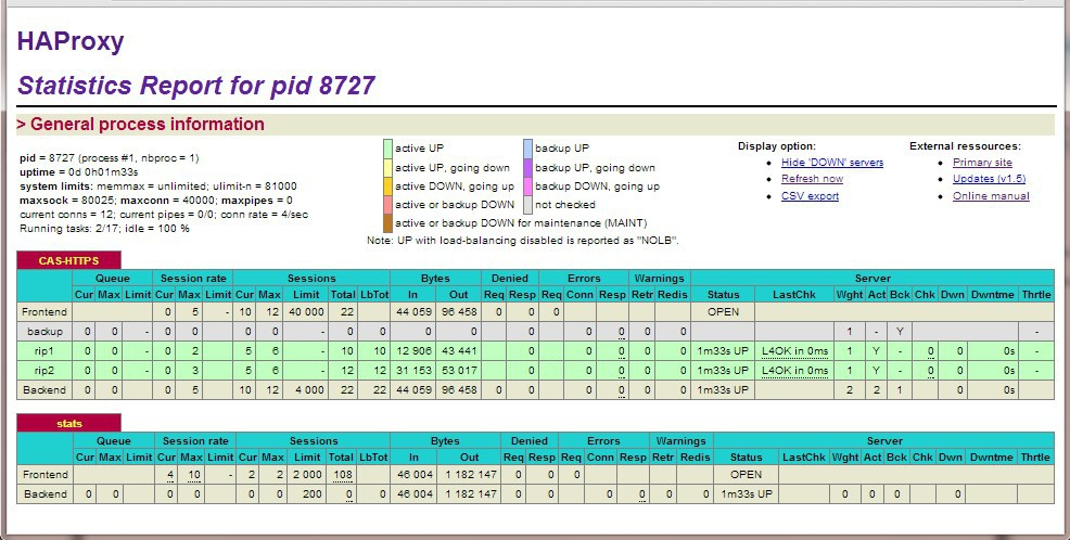Layer 4 Status Report The Layer 4 Status report gives a summary of layer 4 configuration and running stats as shown below. This can be accessed in the WUI using the option: Reports > Layer 4 Status.