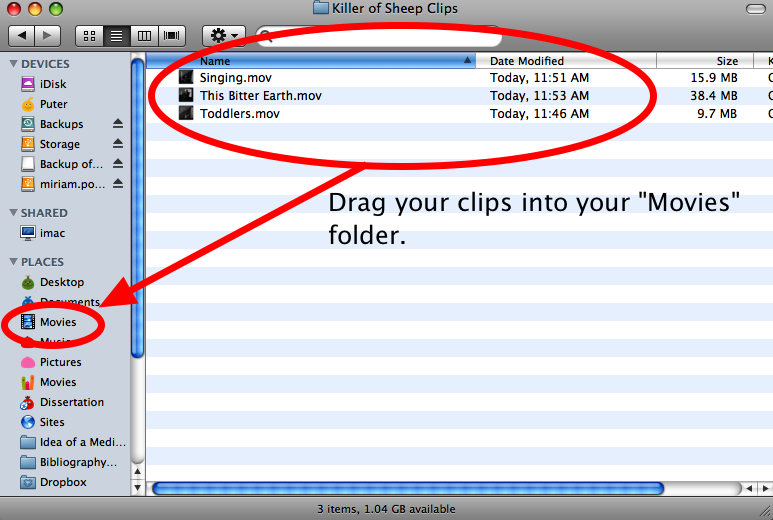 "Step Five: Move your clips to your ""Movies"" folder In step six, you'll be using idvd to burn a DVD of your clips."