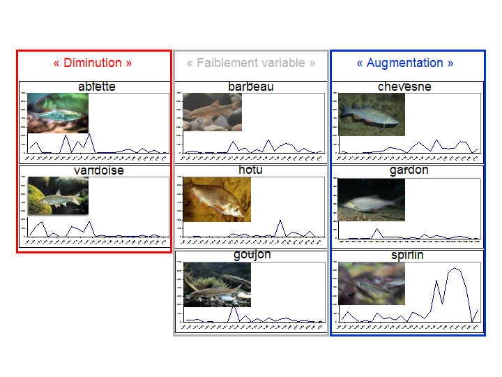 These three groups exhibits different time patterns Éric PARENT et al.