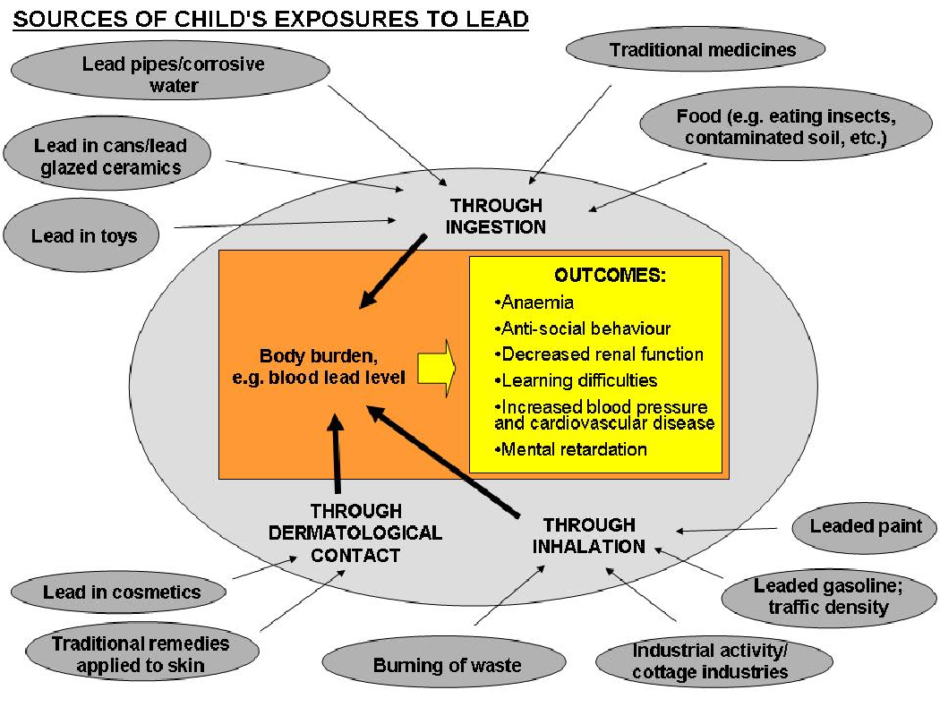 The most common sources of ead in chidren s environments today Chidhood Lead Poisoning Wordwide, the foowing sources and products account for most cases of chidhood exposure to ead and ead poisoning: