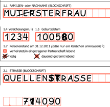 The Tax-Office Procedure Specimen Leer bleibende Felder frei lassen CORRECT RICHTIG WRONG FALSCH How So korrigiere to correct ich errors richtig CORRECT RICHTIG WRONG FALSCH Please forward receipts
