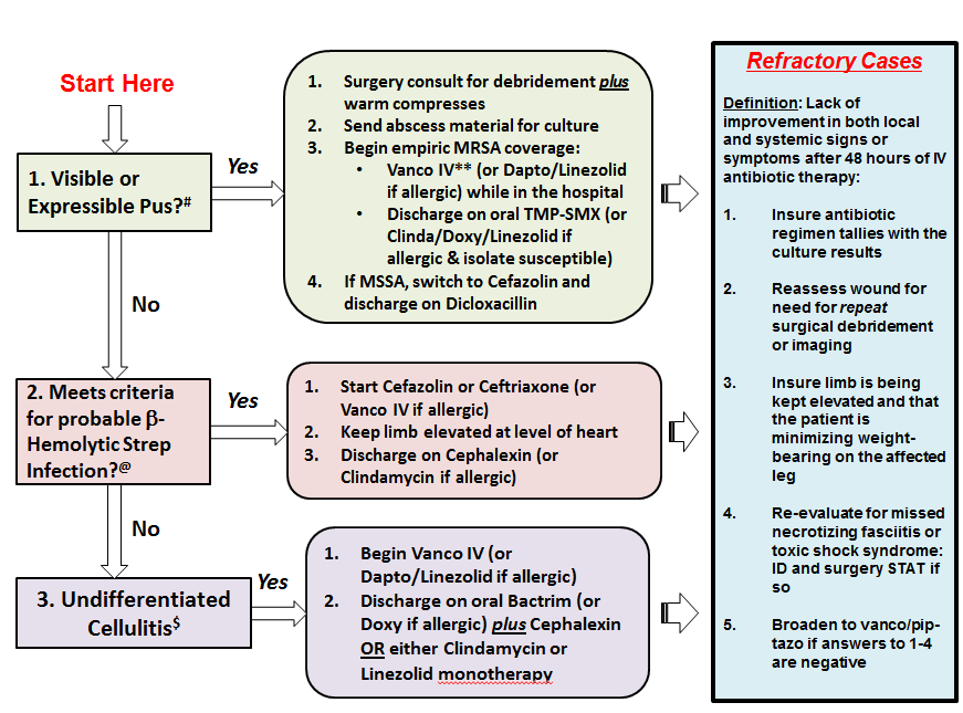 Management Algorithm for Uncomplicated Cellulitis * Inclusion Criteria Adults with an admitting diagnosis of cellulitis Exclusion Criteria By History: Diabetic or decubitus ulcers Animal bite,