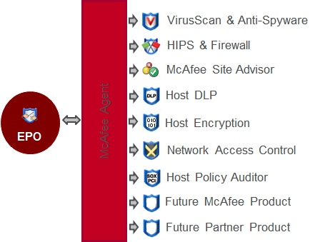 6 The McAfee Agent and your System Tree Agent functionality Once an agent is installed on a system, you never need to use a third-party deployment tool to update anything on that client.