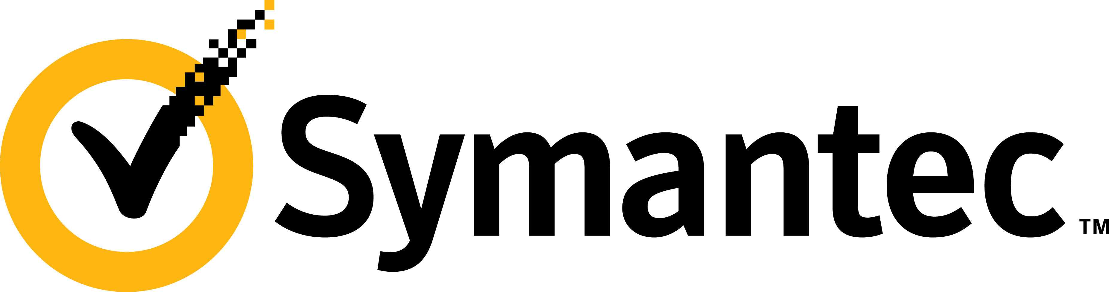 seen the Symantec Datacane video and wish to know more about the