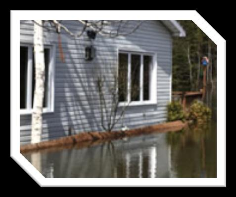 Basic Overview Water damage is best defined as any one of the numerous possible losses caused by the intrusion of water.