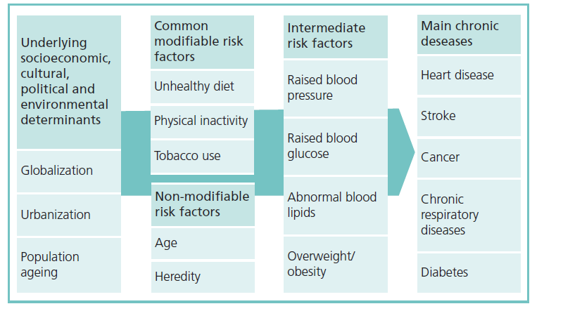 Underlying causes of chronic illness 33% overweight and 14% obese 26% sedentary and 58% limited physical activity 25% smoking Preventing Chronic