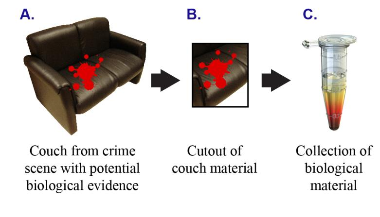 BULKY EVIDENCE: CONSIDERATIONS FOR LONG-TERM EVIDENCE RETENTION To facilitate forensic testing for trial and post-conviction proceedings, it is essential to store and track as much of the evidence as